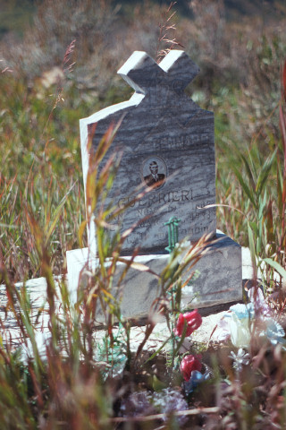 grave in crestted butte.jpg
